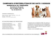 Campanya d'esterilització de gats i gossos